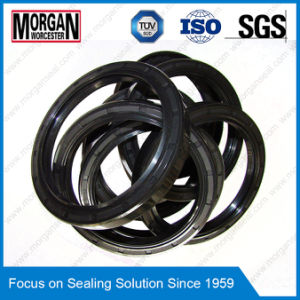 NBR/FKM Rotary Shaft Use a/Sc Type Skeleton Oil Seal pictures & photos