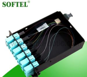 Fiber Optic MPO Patch Cord with Pulling Eyes pictures & photos