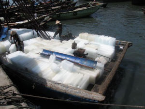30ton Ice Block Machine for Fishing Boat pictures & photos
