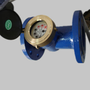 Horizontal Woltman Detachable Dry Dial Water Meter pictures & photos