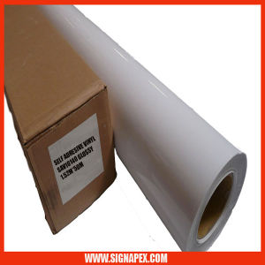 High Quality Polymeric Self Adhesive Vinyl for Large Format Digital Printing/5 Years Valid (SAVPV740W) pictures & photos