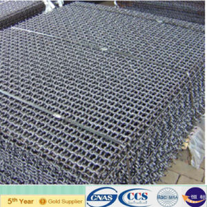 Galvanized Woven Square Crimped Wire Mesh for Poultry Cultivation (XA-CWM07) pictures & photos
