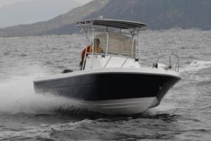 Dafman 690cx Fishing Boat pictures & photos