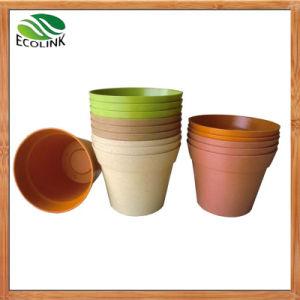 Biodegradable House Flower Plant Pot pictures & photos
