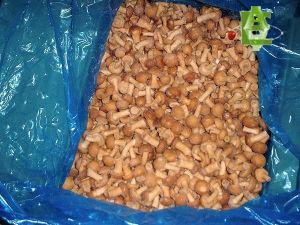 Frozen Nameko Mushrooms