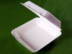 Biodegradable and Disposable 9 Inch Lunch Box