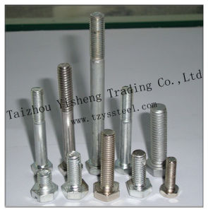 304 Stainless Steel Fastener Bolt and Nut