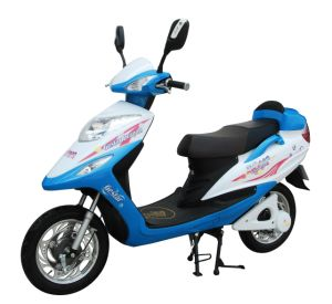 Elctric Scooter (FPE-013)