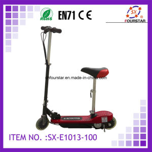 Electric Scooter (SX-E1013) -100