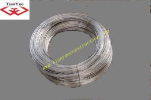 Electro Galvanized Iron Wire (TYA-5) pictures & photos