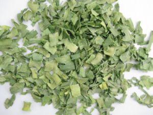Dehydrated Green Leek Flakes (JHWH8-2)