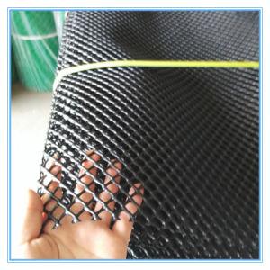 White Plastic Mesh Plate/ Mattes Net pictures & photos