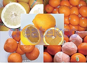 Honey Pomelo/ Navel Orange / Mandarin Orange (Lugan)