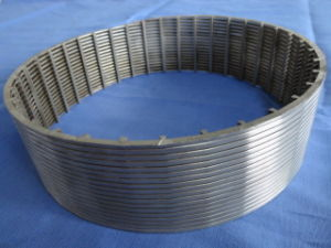Dsm Starch Screens / Wedge Wire Screen pictures & photos