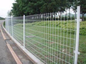 Garden Wire Mesh/Garden Fence Bilateral Wire Mesh