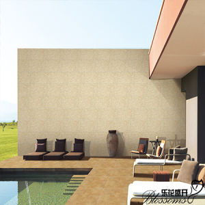 Building Material Ceramic Wall Stone Tile Exterior Wall Tile (300X600mm) pictures & photos