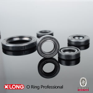 Oil and Dust Resistant High Quality NBR Oil Seal pictures & photos