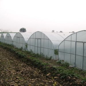 Plastic Film Commercial Vegetable Greenhouse for Sale pictures & photos