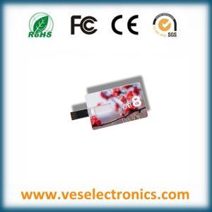 Custom USB Flash Drive Credit Card USB Drive USB Flash pictures & photos