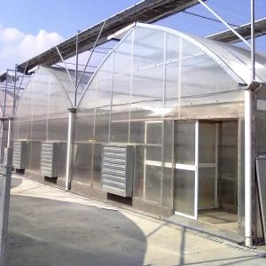 Agricultural Poly Arch PC Greenhouse for Sale pictures & photos