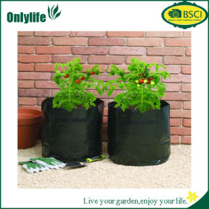 Onlylife PE Fabric Garden Potato Grow Bag pictures & photos