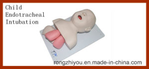 Child Endotracheal Intubation Training Model (Educational Medical Model) pictures & photos