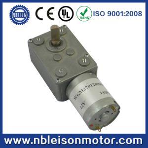 3V 6V 12V 24V Small Micro DC Worm Geared Motor pictures & photos