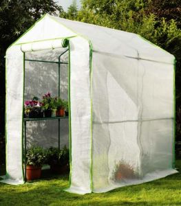 Walk-in Greenhouse with PE Cover