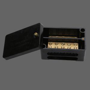 100A 2 Pole Link Box Black