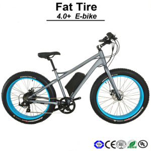 500W Big Power Beach Cruiser Electric Bike Fat Tire 4.0inch Electric Bicycle (TDE12Z) pictures & photos