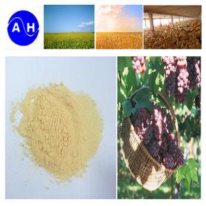 High Amino Acid Organic Nitrogen Fertilizer Pure Organic pictures & photos