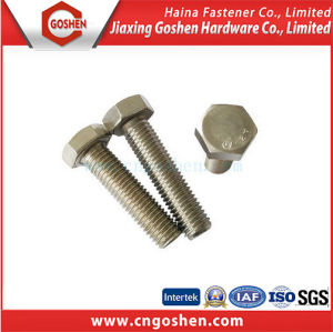 A2 A4 Stainless Steel Bolts Screws and Fasteners pictures & photos
