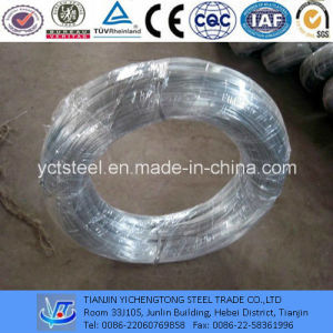 Bright Galvanized Steel Wire Q195 pictures & photos