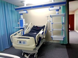 Two Functions Electric Hospital Beds Philippines (AG-BM201) pictures & photos