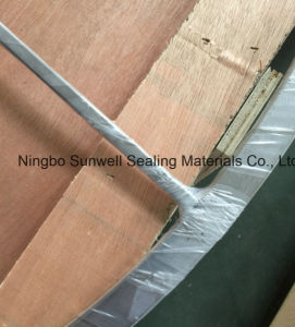 Double Jacket Gasket Ti Graphite Materials (sunwell) pictures & photos