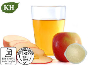 100% Natural Apple Cider Vinegar Powder: Acetic Acid 4.5%. 10% by Titration pictures & photos
