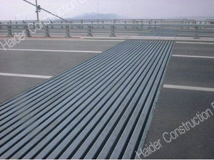 Large Movement Modular Expansion Joint Made in China pictures & photos