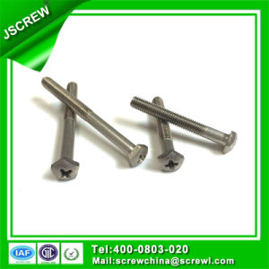 Screw Manufacture Produce Custom Design Special Screw Bolt pictures & photos