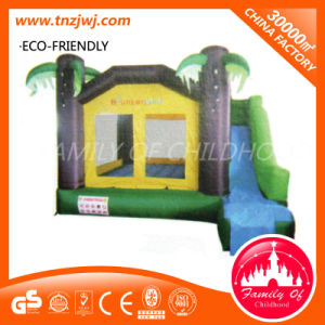 Commercial Inflatable Toy Inflatable Jumping Castle Inflatable Slide pictures & photos
