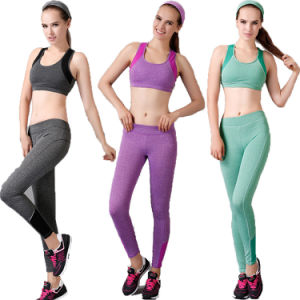 Sports Compression Trousers High Elastic Quality Guarantee for Women (AKCY) pictures & photos