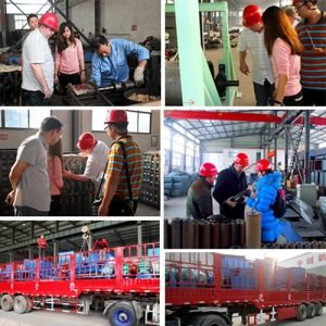 Granite, Powder Vibrating Screener, Ceramic, Chemical, Building Material Linear Vibrating Screen (ZS-1530) pictures & photos