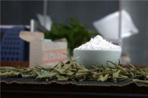 Organic Sugar Rebaudioside a 98% Stevia Food pictures & photos