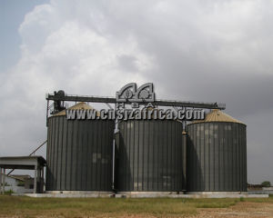 1000-5000t Grain Storage Steel Silo pictures & photos