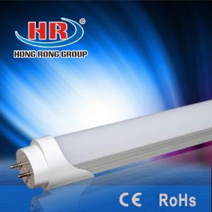 LED SMD 2835 LED T8 Tube 0.6m LED Tube T8