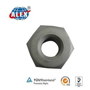 Hex Locking Nut for Fish Bolt pictures & photos