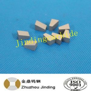 Hip Sintered Special Shape Wear Tip Cemented Carbide Yg8 pictures & photos