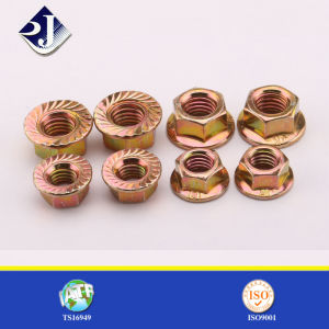 SGS Certificate Hex Flange Nut pictures & photos