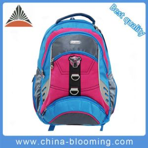 Leisure Travel Sport Bag Computer Laptop Fashion Notebook Backpack pictures & photos