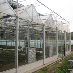 New Arrival 2016 Best Polycarbonate Sheet and Glass Greenhouse pictures & photos