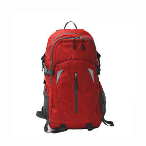 Outdoor Hiking Brand Customized Backpack Walking Billboard Sh-15122164 pictures & photos
